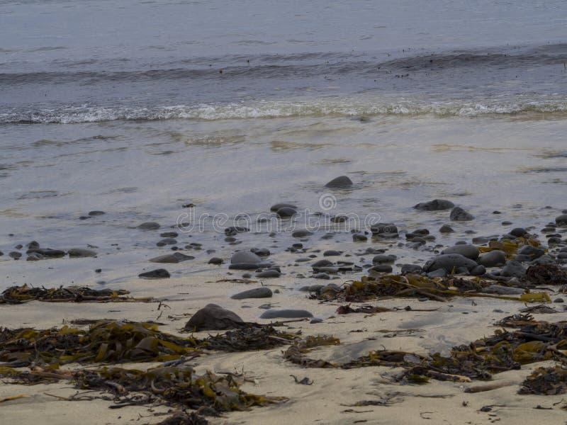 在西部海湾冰岛,岩石、小卵石、沙子和岸的粗砺的冰岛海岸 免版税库存照片