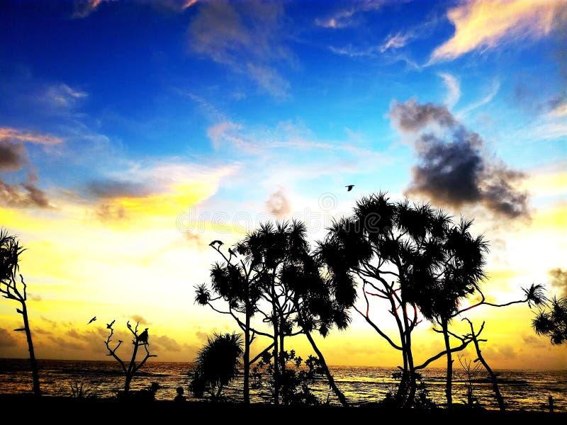 在西部海滩的日落在斯里兰卡 库存照片