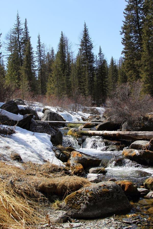 在西部萨彦岭的春天 河Stoktysh 免版税库存照片