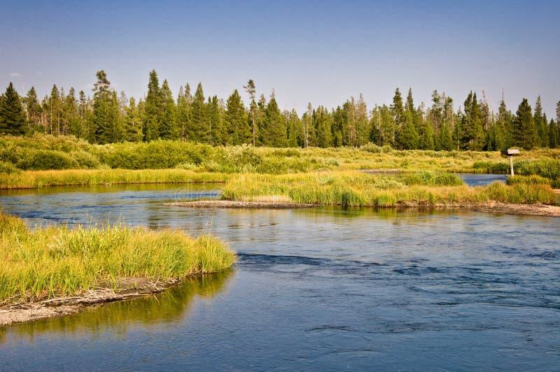 在西部黄石,蒙大拿美国附近的麦迪逊河 免版税库存照片
