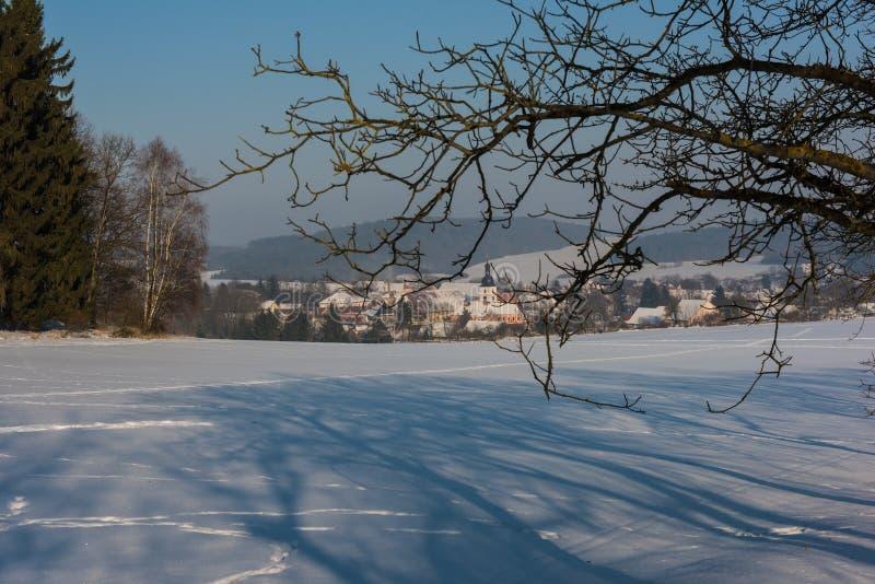 在西Bhemia的冬天vilage 免版税库存图片