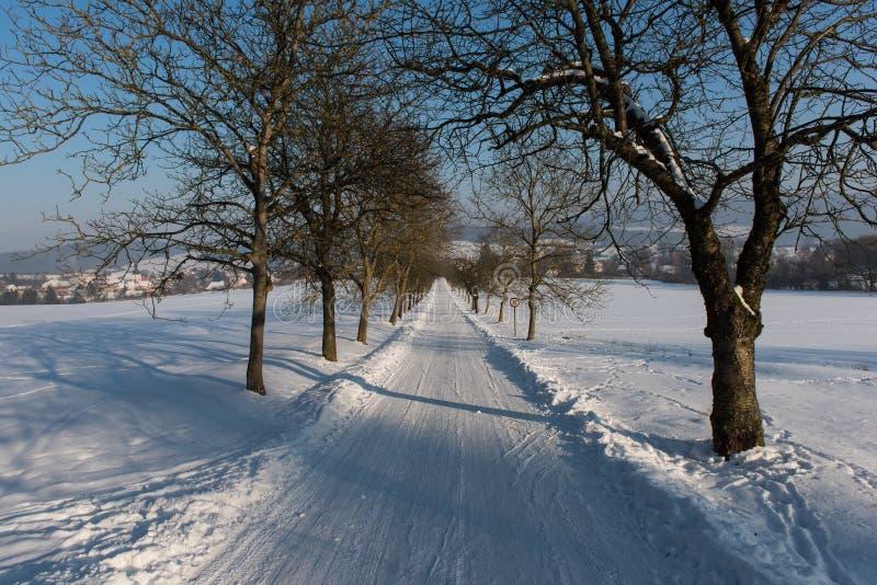 在西Bhemia的冬天vilage 库存照片