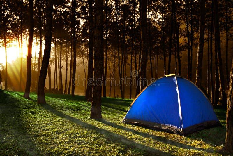 在观看日落的小山的帐篷 库存图片