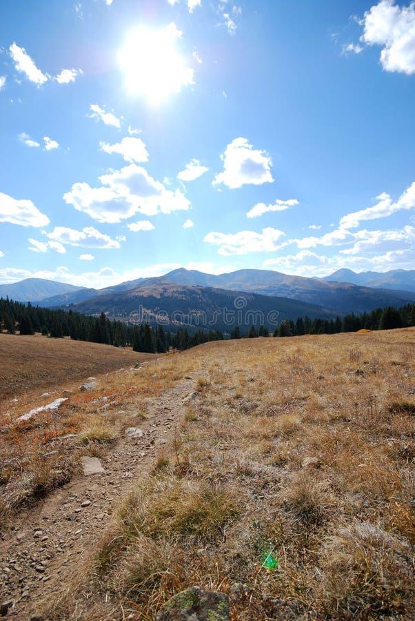 在视图附近的baldy breckenridge co山 免版税库存图片