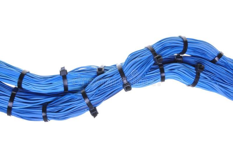 在计算机全球网络的蓝色电缆捆绑 图库摄影