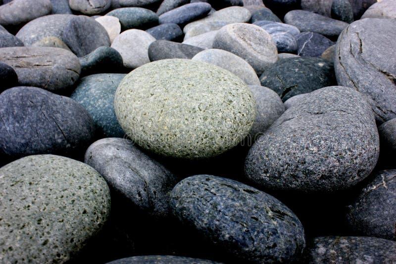 在许多中的一个小卵石 库存图片