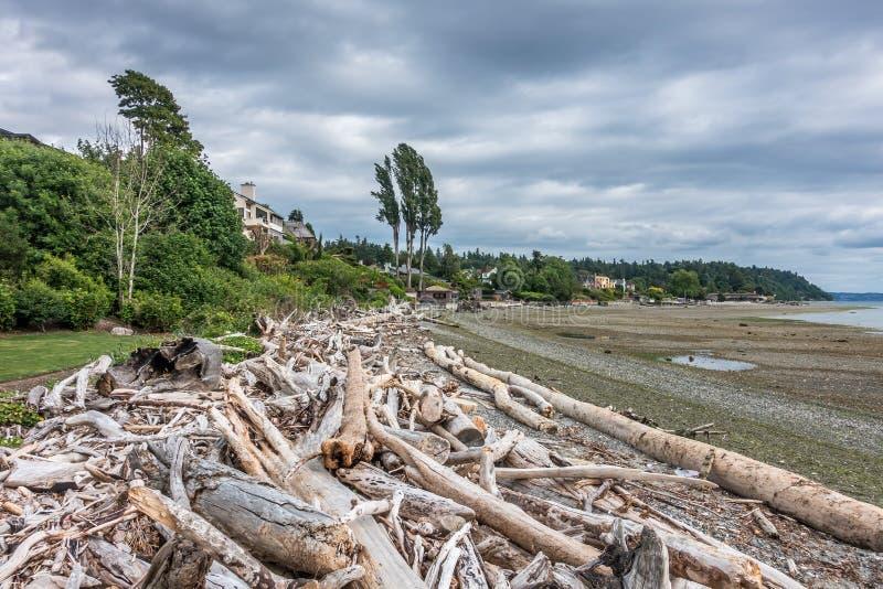 Download 在诺曼底公园2的低潮 库存图片. 图片 包括有 和平, 状态, 漂流木头, 浪潮, 海洋, 西北, 海底 - 72359539