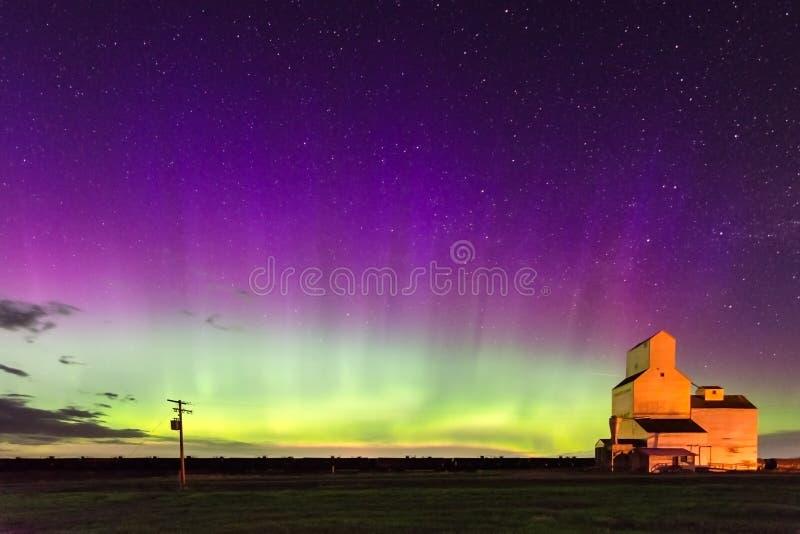 在谷物仓库的极光Borealis北极光在信号旗,萨斯喀彻温省 库存照片