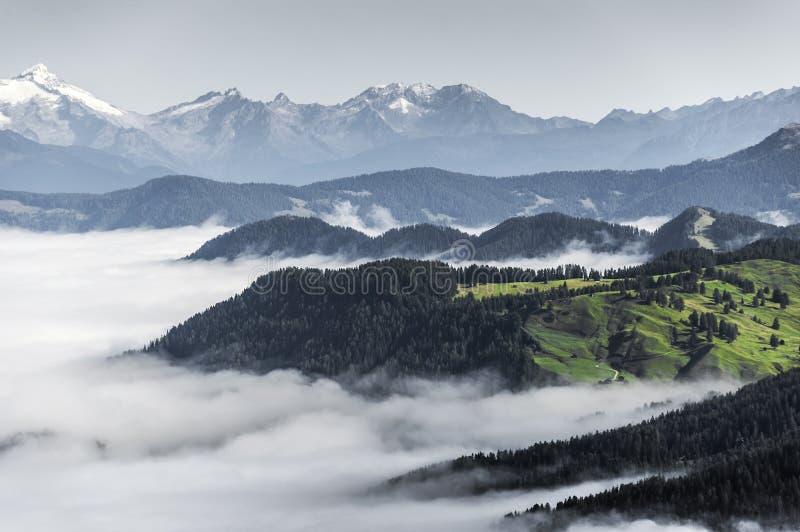 在谷的早晨雾, Dolomiti 库存照片