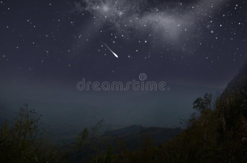 在谷的明亮的彗星在森林里 库存图片