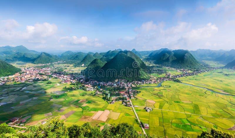 在谷的米领域在Bac儿子,越南 库存照片