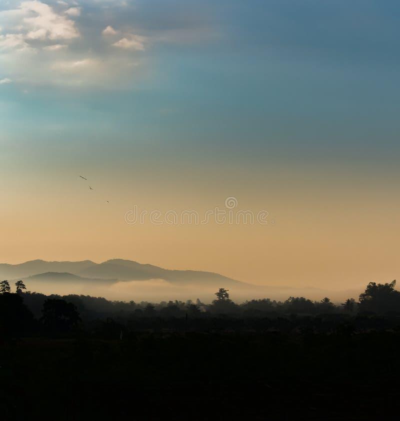 在谷的薄雾 免版税库存图片