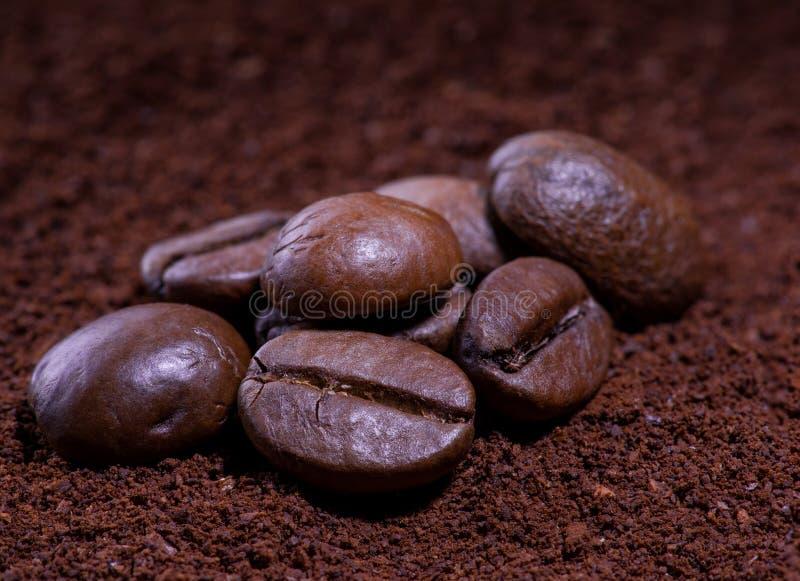 在豆的咖啡 图库摄影