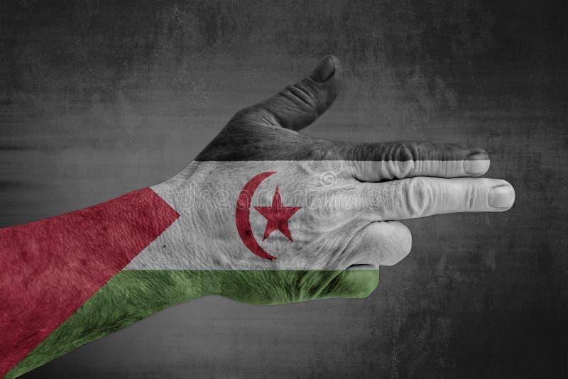 在象枪的男性手上绘的撒拉威阿拉伯民主共和国旗子 免版税库存图片