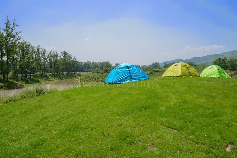 在象草的小山顶的帐篷海滨的在晴朗的夏天 图库摄影