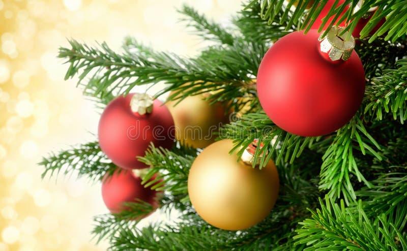 在豪华的冷杉分支的圣诞节中看不中用的物品 库存图片