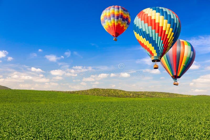 在豪华的绿色风景和天空蔚蓝的热空气气球 免版税库存图片