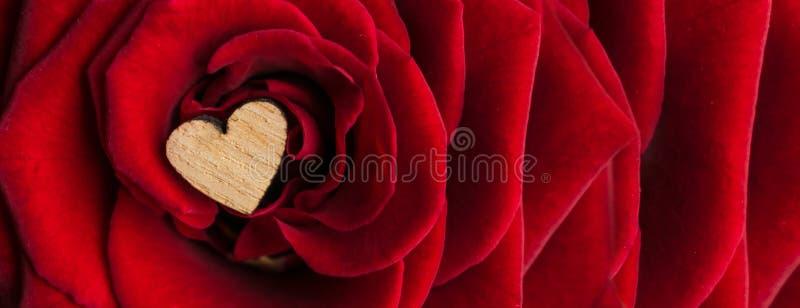 在豪华红色天鹅绒的瓣的中间小木心脏上升了 与a的典雅的豪华红色玫瑰横幅背景 库存照片