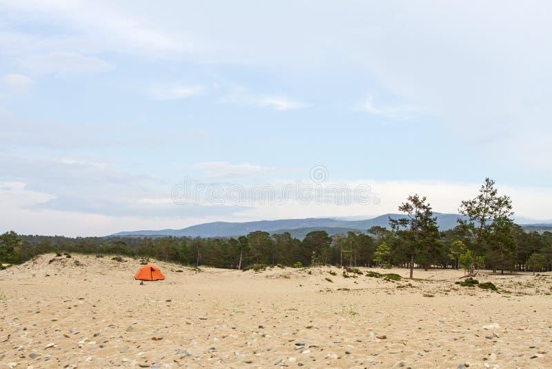 在贝加尔湖岸的沙滩的帐篷在针叶树中的夏天在山背景 库存照片