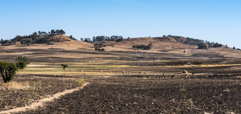 在贡德尔和西米昂山之间的风景视图,埃塞俄比亚,非洲 库存照片