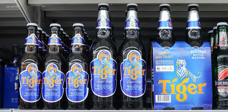 在货架的老虎啤酒在超级市场 在1932年它发射了,啤酒成为新加坡的老虎 图库摄影