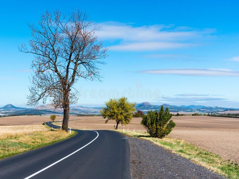 在贫瘠风景的柏油路与树在晴朗的秋天天 库存照片