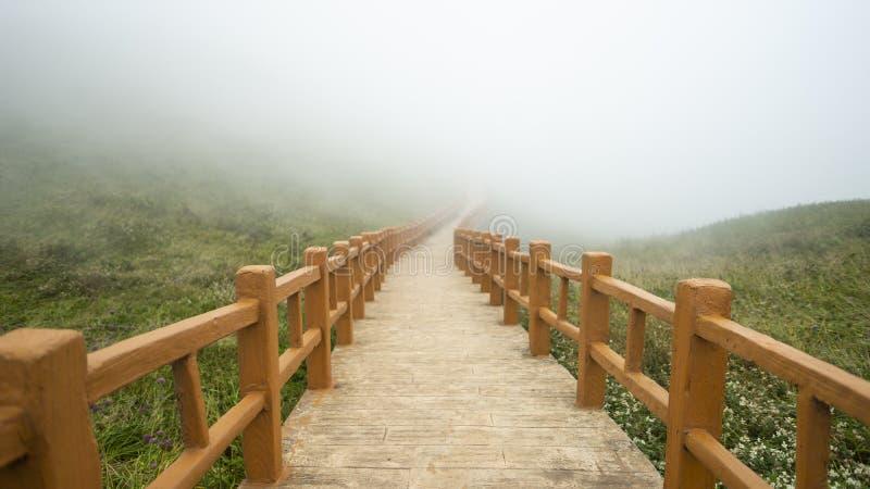 在贵州的TAI基乌砰砰砰 免版税库存照片