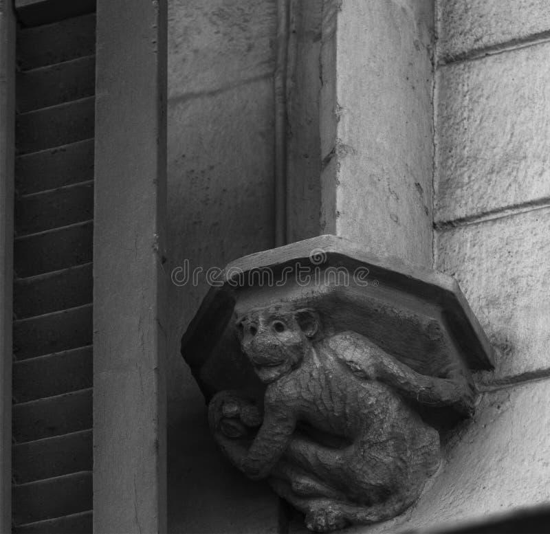 在资本的猴子由窗口 图库摄影