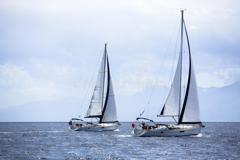 在赛船会前面的风船在早晨薄雾 库存照片