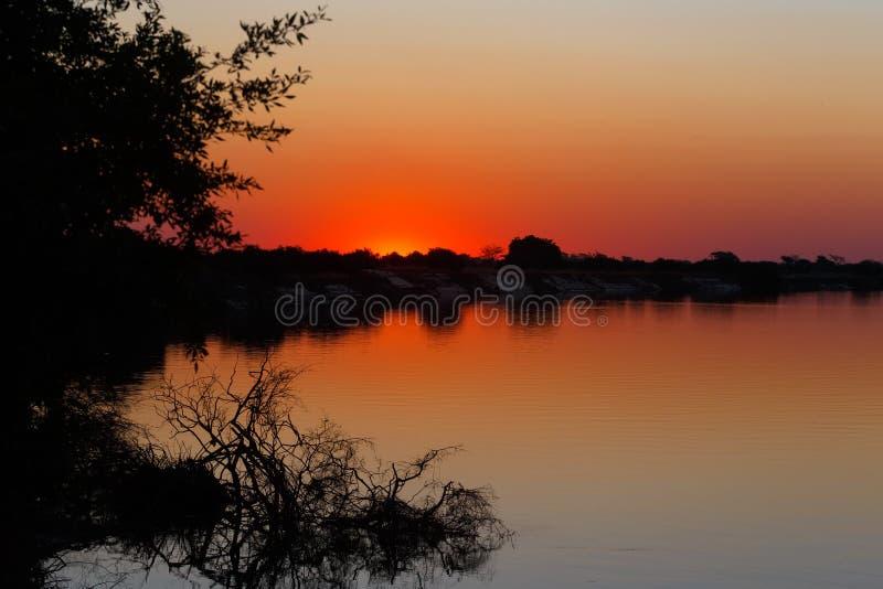在赞比西河的非洲日落 库存照片