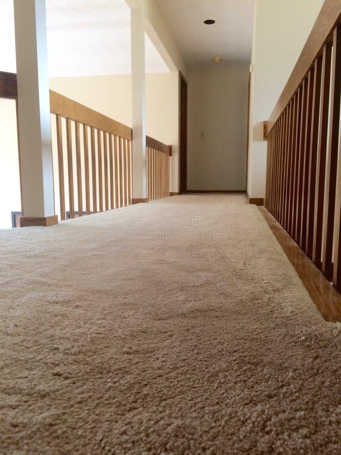 在走廊清洗长毛绒地毯 免版税库存图片