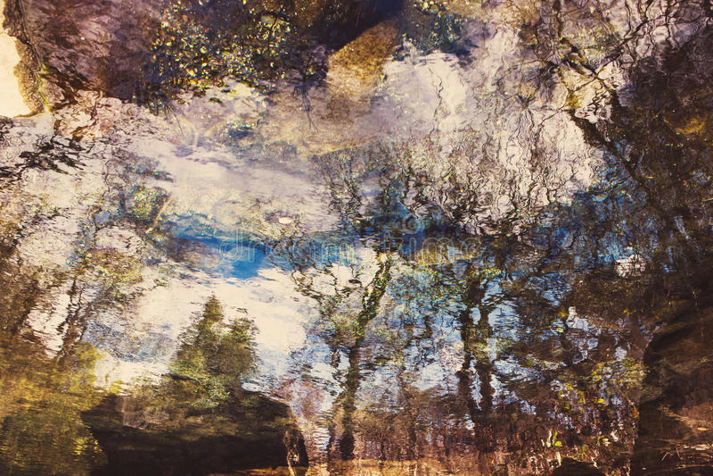 在起波纹的水的抽象树反射 库存图片