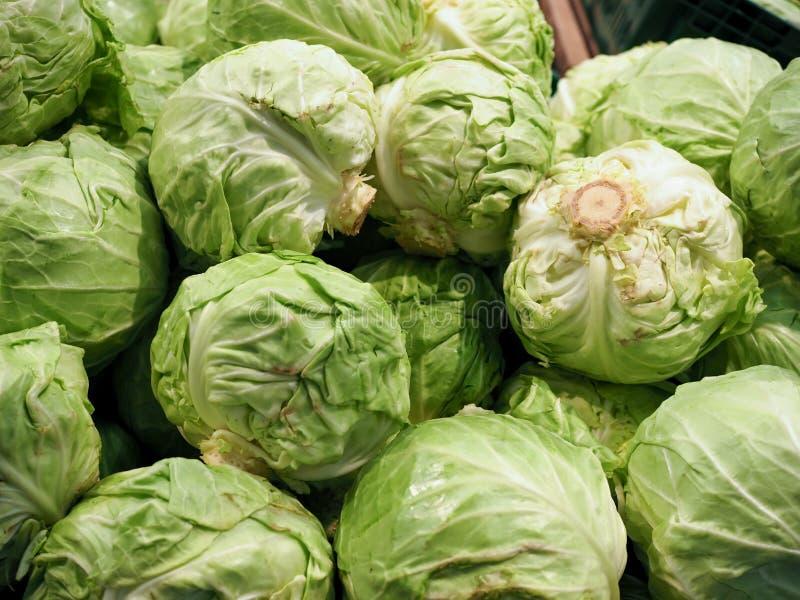 在超级市场报亭的新鲜的圆白菜 在显示的新鲜的圆白菜在杂货店 在架子的圆白菜在通常市场上 免版税库存图片