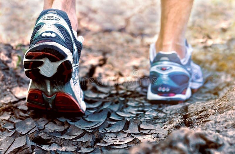 在足迹健康生活方式的运动员连续体育鞋子 库存图片