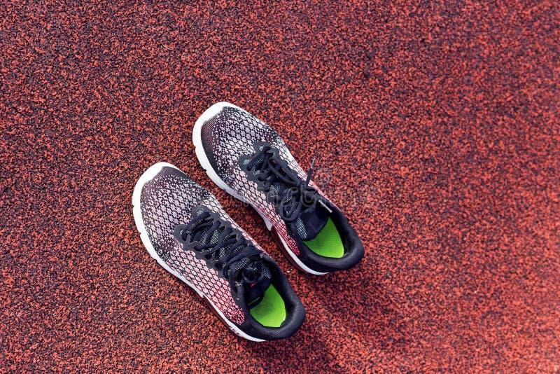 在跑马场,顶视图的跑鞋 免版税库存照片
