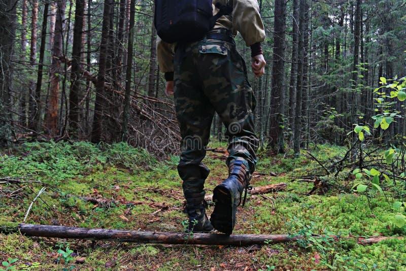 在跨步在森林里的鞋子的脚 库存照片