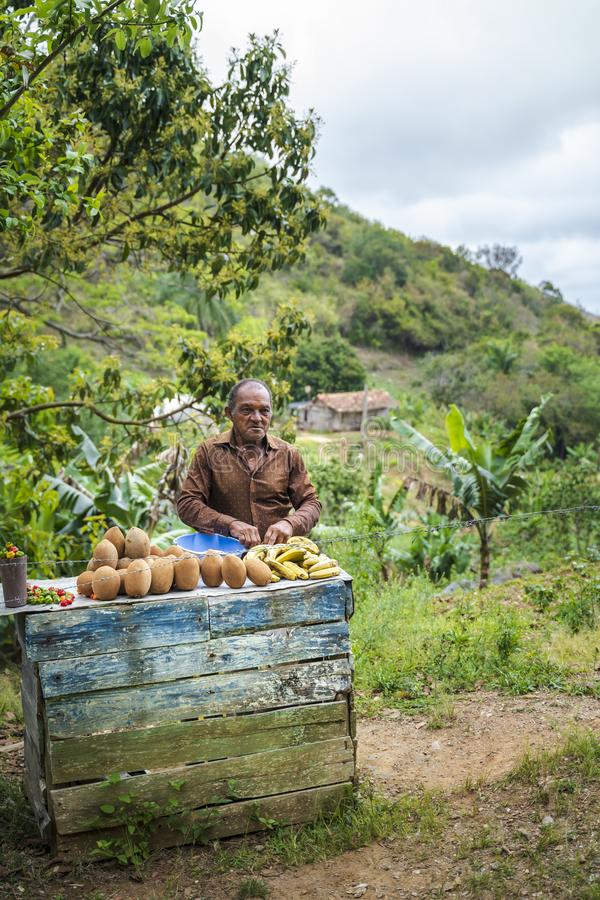 在路一边的地方fruitseller,古巴 图库摄影