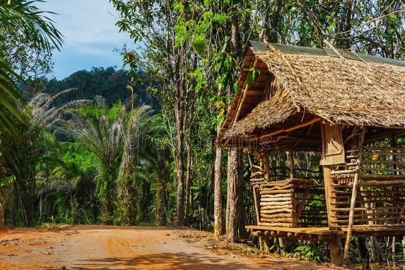 在路的小屋在普吉岛的密林在泰国 免版税库存图片