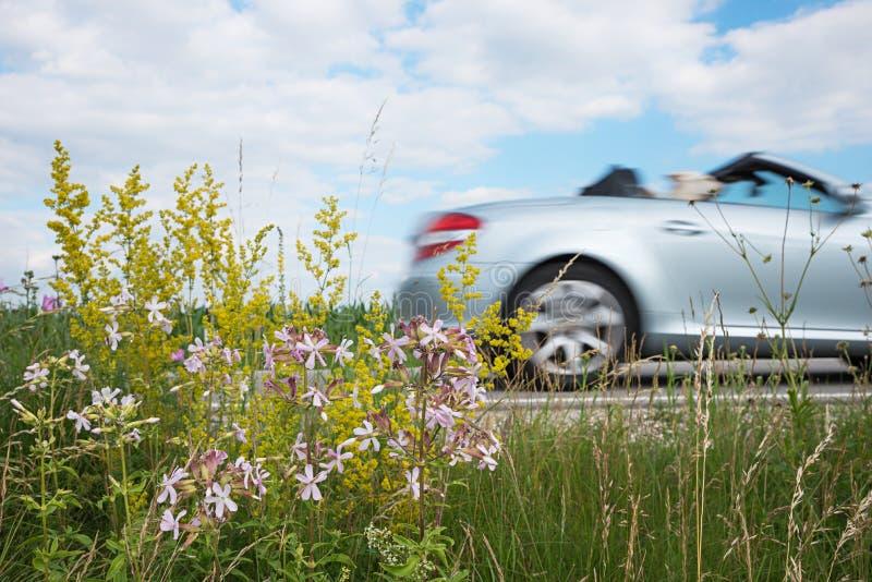 在路的快速的跑车,从路旁绿色空间的透视 免版税库存图片