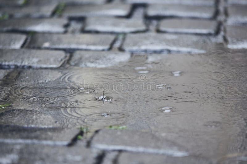 在路的水坑在雨中 免版税库存照片