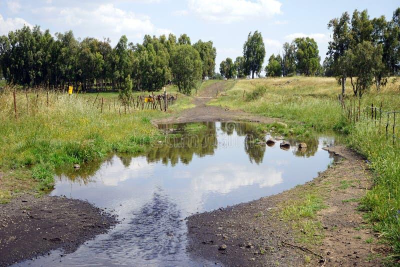 在路的水池 库存图片