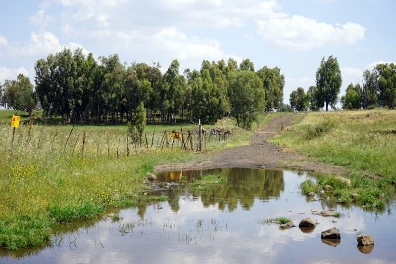 在路的水池 库存照片