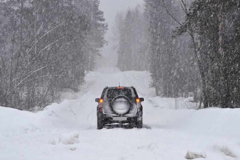 在路的汽车在雪的森林里 免版税图库摄影