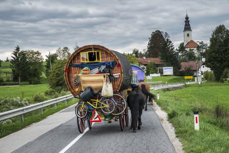 在路的用马拉的无盖货车 图库摄影