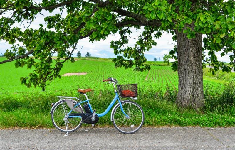 在路的自行车在领域农场前面 免版税库存照片
