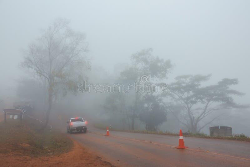 在路的雾 库存图片