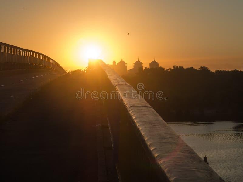 在路的黎明在往太阳的桥梁 使目炫早晨太阳 免版税图库摄影
