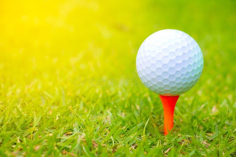 在路线的高尔夫球 球高尔夫球桔子发球区域 库存图片