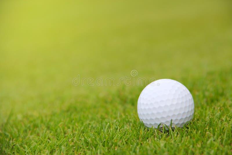 在路线的高尔夫球 库存照片