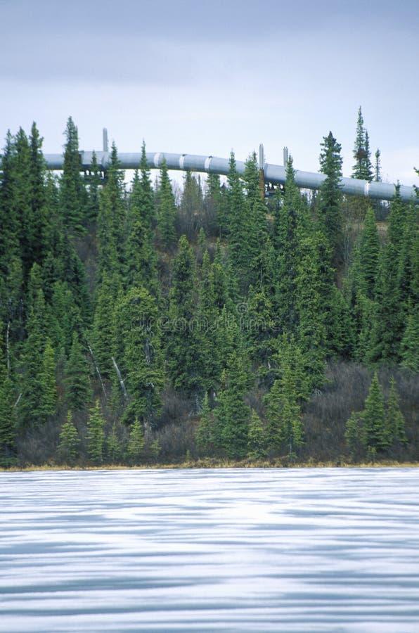 在路线4的跨阿拉斯加管道,在Paxson附近, AK 库存图片